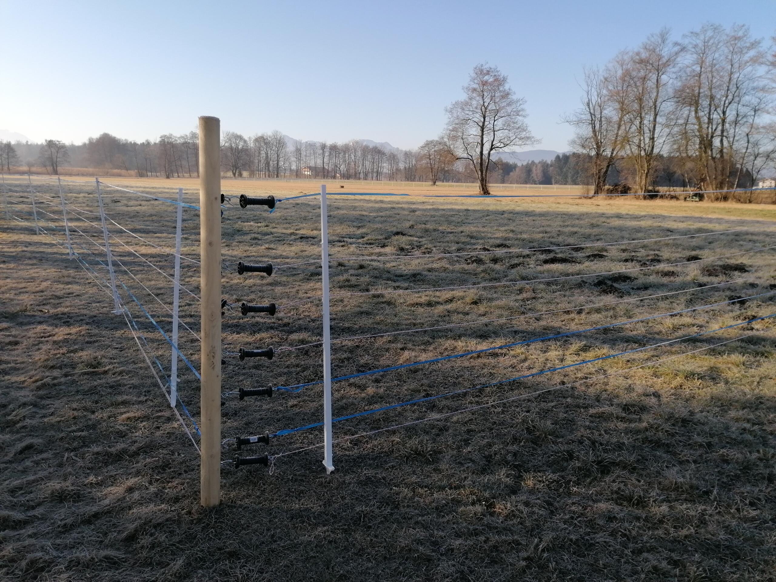 Zaun zum Schutz für die Wiesenbrüter